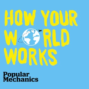 How Your World Works