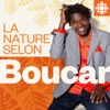 La nature selon Boucar