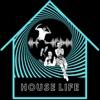 House life (how's life?) artwork