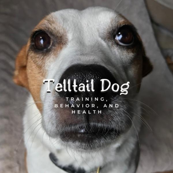 Telltail Dog Artwork