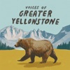 Voices of Greater Yellowstone artwork