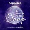De Selfcare Podcast: Slaap