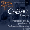 CaBan Professional Learning Podcast artwork