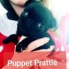 Puppet Prattle artwork