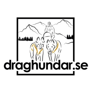 Draghundar's podcast