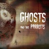 Ghosts And Two Parrots artwork