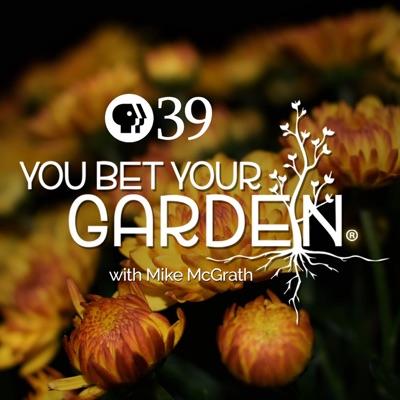 You Bet Your Garden:PBS39