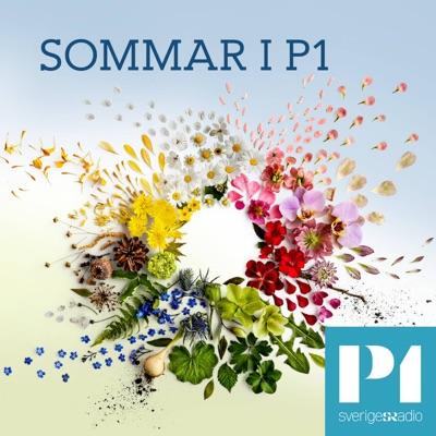 Sommar & Vinter i P1:Sveriges Radio