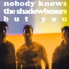 Nobody Knows The Shadowboxers But You artwork