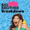 Big Brother Breakdown artwork
