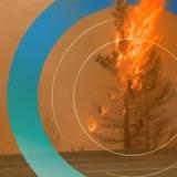 Stora skogsbrandsavsnittet