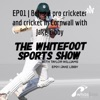The Whitefoot Cricket Show artwork