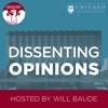 Dissenting Opinions artwork