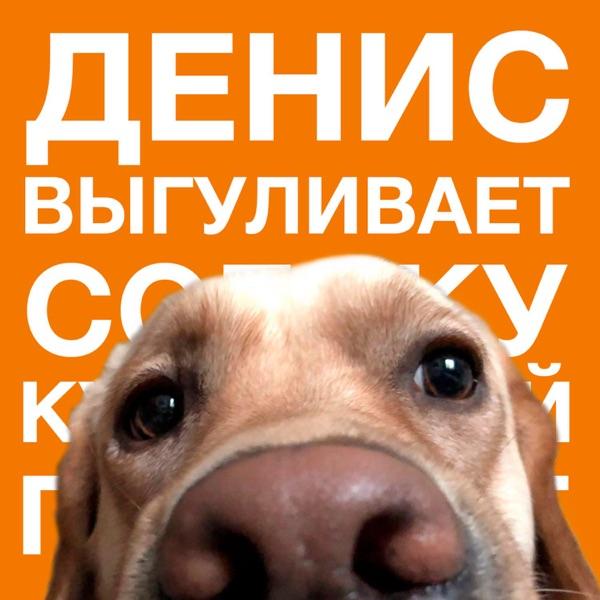 Денис выгуливает собаку image