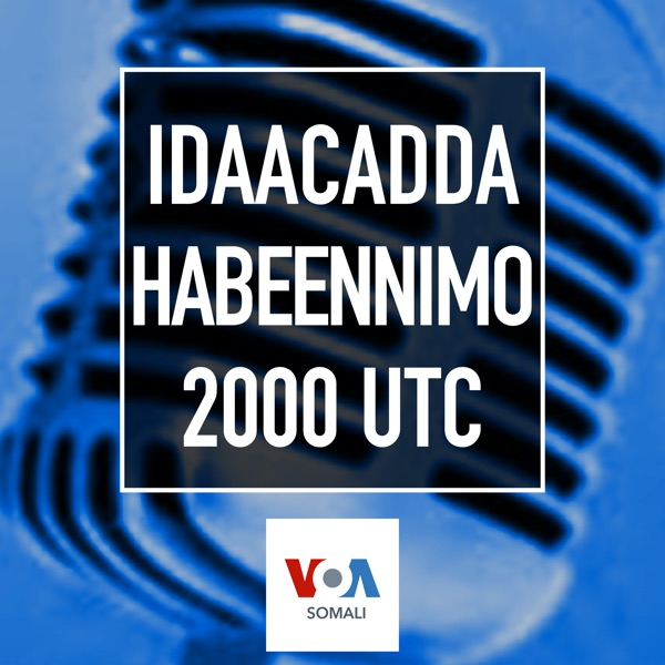 Idaacadda Habeenimo - VOA