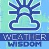 Weather Wisdom artwork