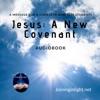 Jesus: A New Covenant ACIM artwork