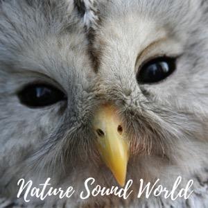 Nature Sound World