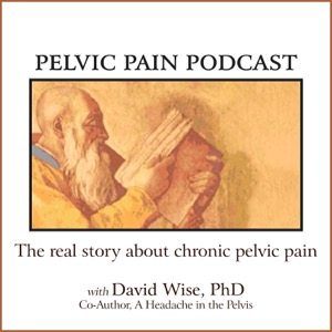 Pelvic Pain Podcast The Real Story About Chronic Pelvic Pain