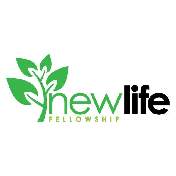 New Life Fellowship Moline IL