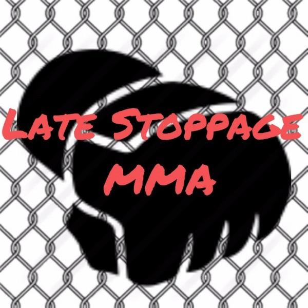 Late Stoppage MMA