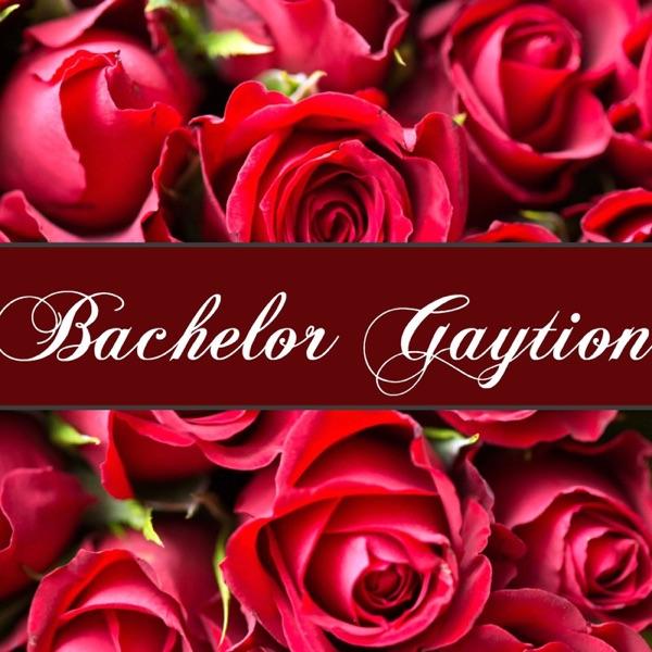 Bachelor Gaytion – Podcast – Podtail