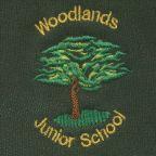 Year 5 Audio Books By Woodlands Junior School, Harrogate podcast