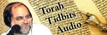 Israel National Radio - Torah Tidbits Audio