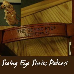 Seeing Eye Stories