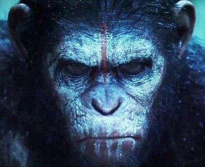 Ape Kill Ape (A.K.A.)