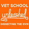 Vet School Unleashed: Dissecting the DVM - Talking About All Things Veterinary School