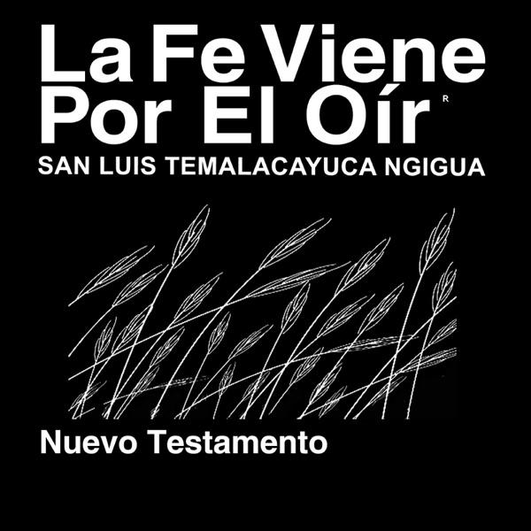Ngigua, San Luís Temalacayuca Biblia (no dramatizada) - Ngigua, San Luis Temalacayuca Bible (Non-Dramatized)