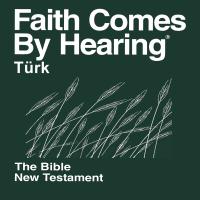 Türkçe İncil Halk Dilinde 2012 (dramatize değil) - Turkish Bible (Non-Dramatized) podcast
