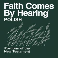 Polska Biblia Nowe Przymierze Translation (Non-udramatyzowana) Księga Psalmów - Polish Bible (Non-Dramatized) Book of Psalm