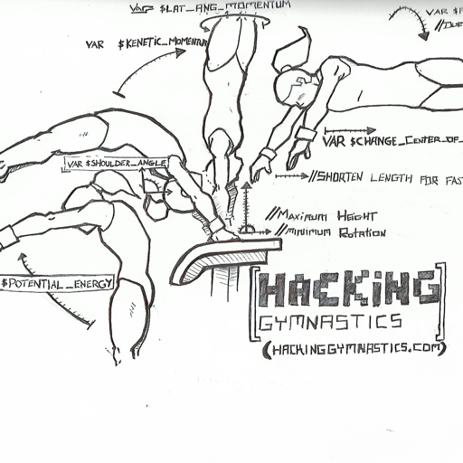 Cover image of Hacking Gymnastics