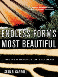 Endless Forms Most Beautiful: The New Science of Evo Devo book