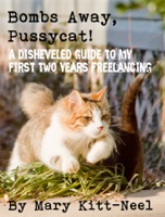 Bombs Away, Pussycat! A disheveled guide to my first two years freelancing