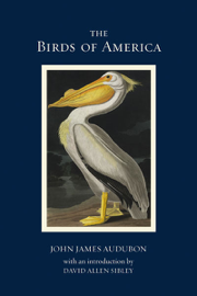 Birds of America - Highlights