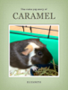 Elizabeth Wax - Caramel the Guinea Pig artwork
