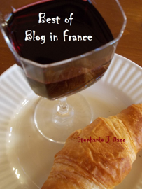 Best of Blog in France book