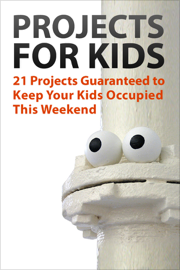 Projects for Kids book