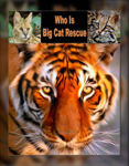 Who Is Big Cat Rescue