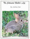 The Cottontail Rabbits Life