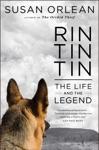 Rin Tin Tin Enhanced