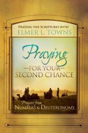 Praying for Your Second Chance PDF Download