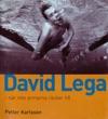 David Lega - Nr Armarna Inte Rcker Till
