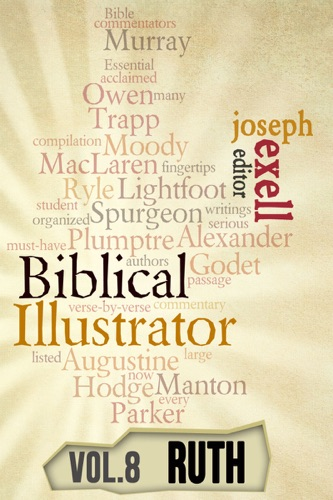 Read The Biblical Illustrator - Vol  8 - Pastoral Commentary