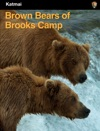 Brown Bears Of Brooks Camp