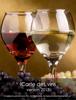 DiSoMarketing - iCarte des vins sur iPad artwork