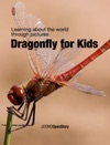 Dragonfly For Kids